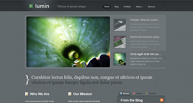 Elegantthemes wordpress主题 – Lumin