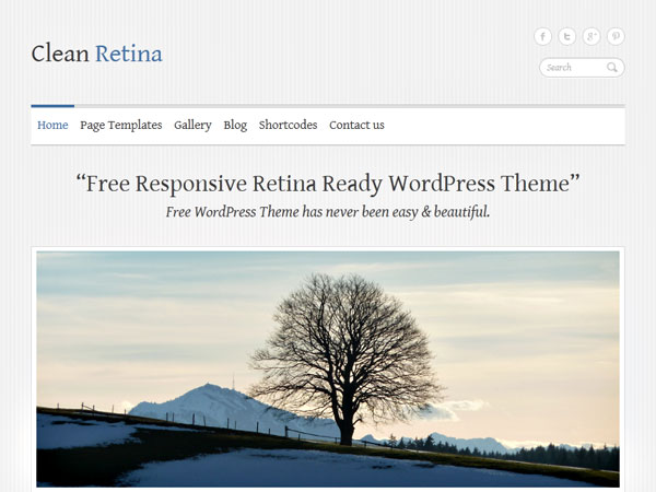 wordpress汉化主题 – Clean Retina