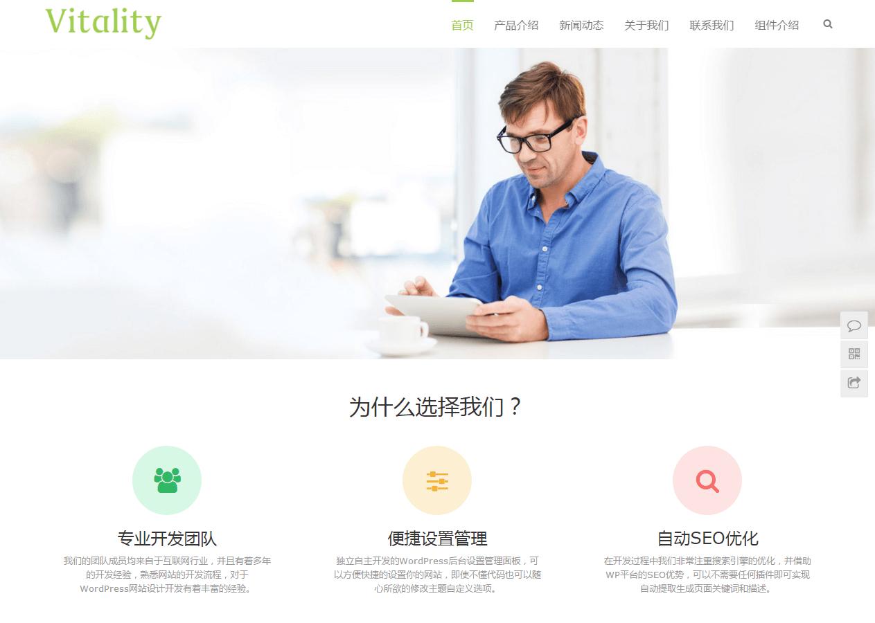 Vitality 中文原创WordPress主题