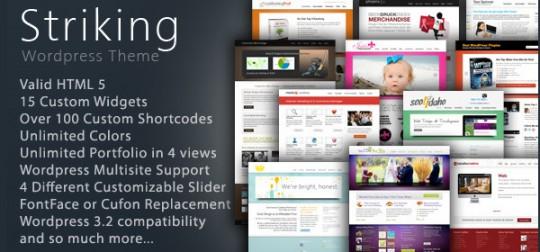 Striking wordpress企业高级商业主题模板[更新至12.82]