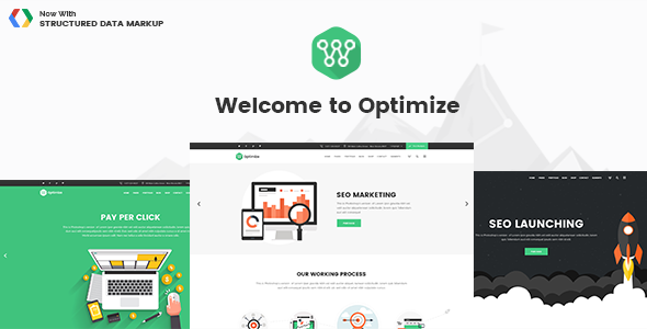 Optimize SEO数字市场网络媒体 WordPress主题 v1.1