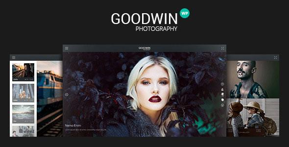 GoodWin 摄影视频 WordPress主题 v1.3