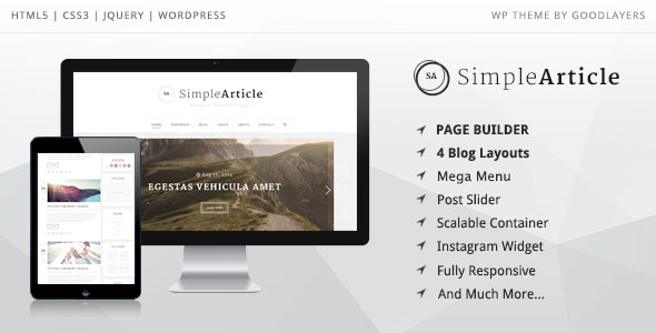 Simple Article 专业博客 WordPress主题