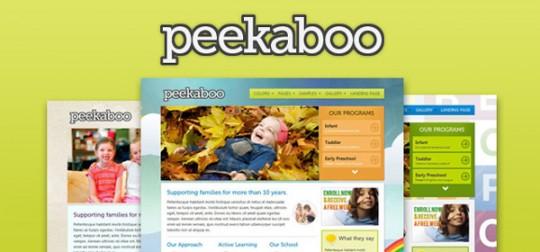 WordPress主题:Pekaboo儿童类主题 v2.9