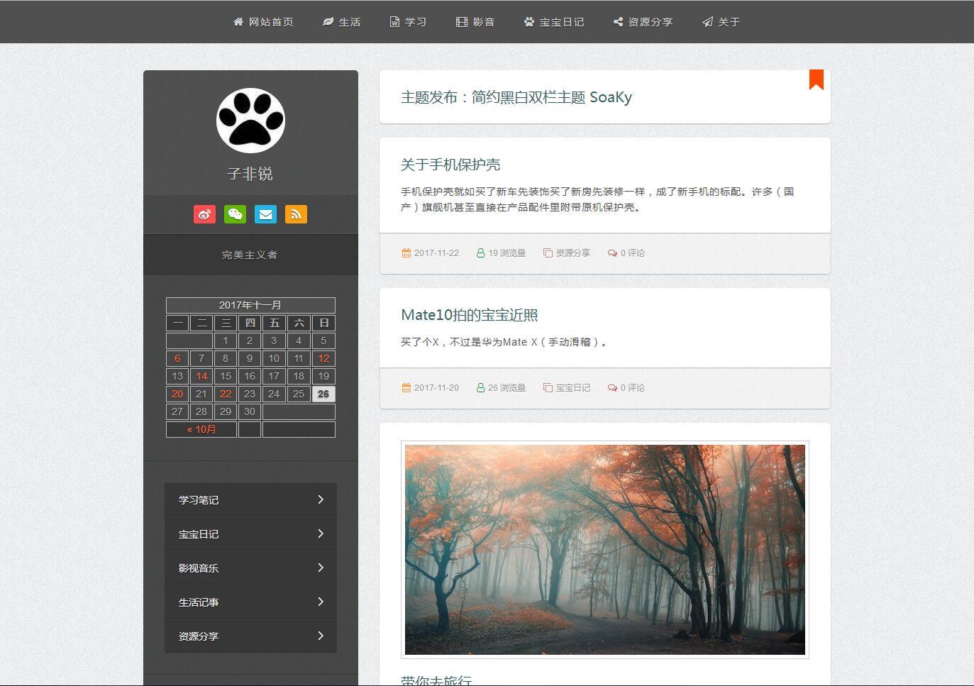 WordPress简约双栏博客主题 SoaKy V1.5免费分享